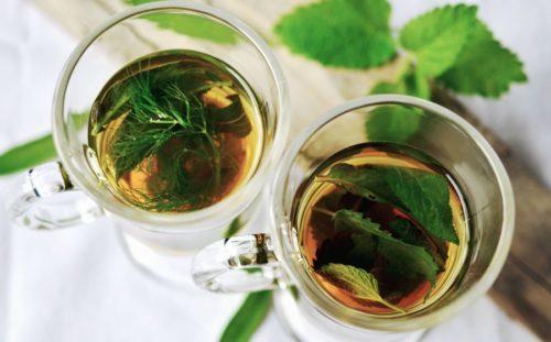 planter de la menthe marocaine pour faire du thé à la menthe