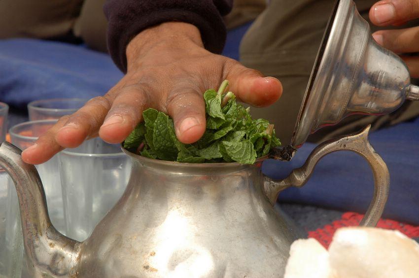 planter de la menthe verte pour faire du thé marocain