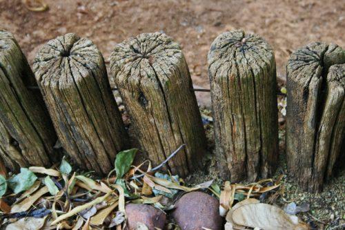 bordures avec des rondins de bois qui pourrissent