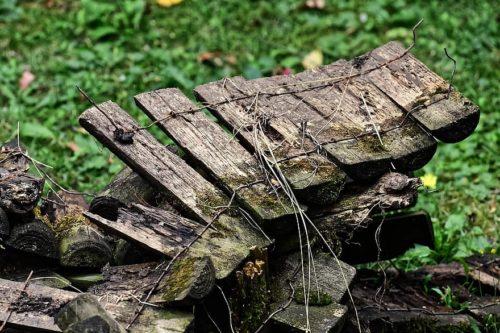 bordure demi rondins de bois qui pourrissent