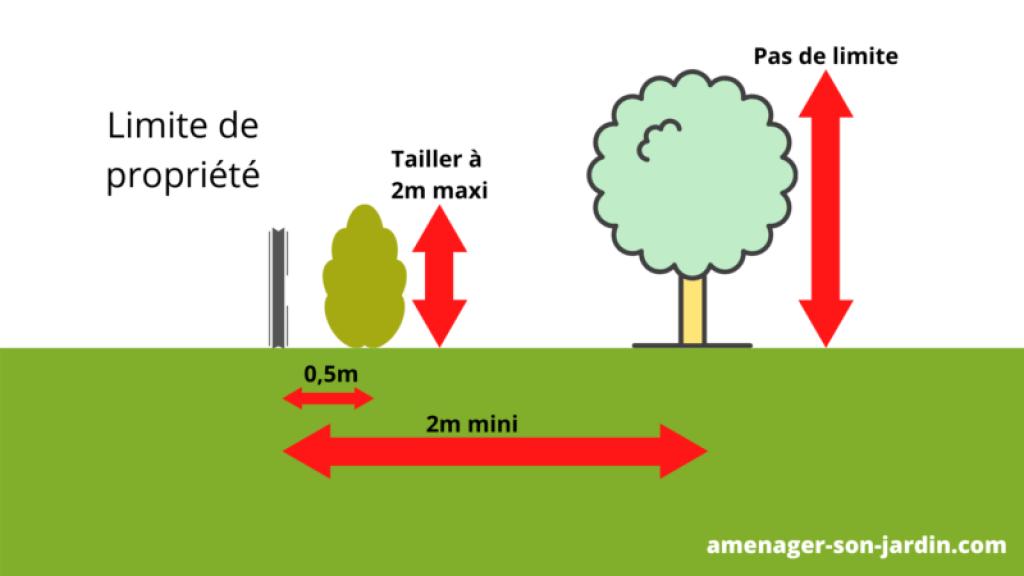 schéma règlementation distance arbre / clôture