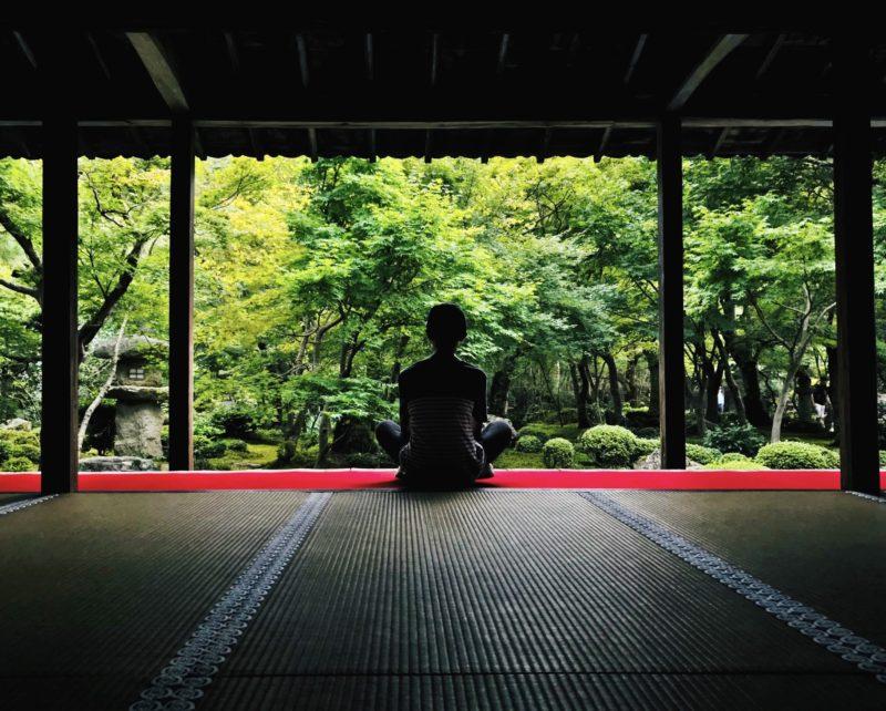 jardin zen avec des érables du japon