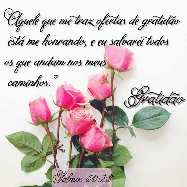 Imagem para instagram - Oferta de Gratidão