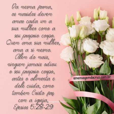 Ame sua mulher - versiculos-sobre-amor-efesios-5-28-29