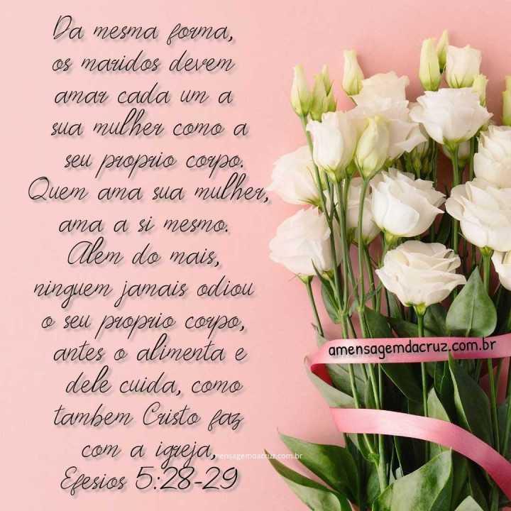 Ame sua mulher - versículo sobre amor - Efésios 5:28-29