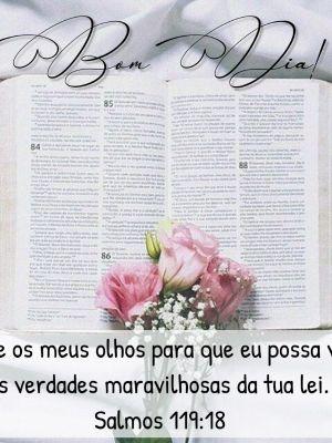 plano de Leitura da Biblia