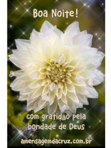 Gratidão a Deus - Mensagem de Boa Noite