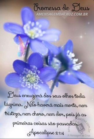 Deus Enxugará Todas as Suas Lágrimas - Apocalipse 21-4 1