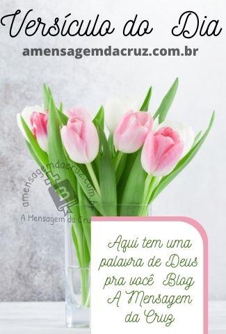 Versículo do Dia - Palavra de Deus Para Hoje