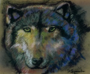 Wolf Eyes... Wise Eyes...