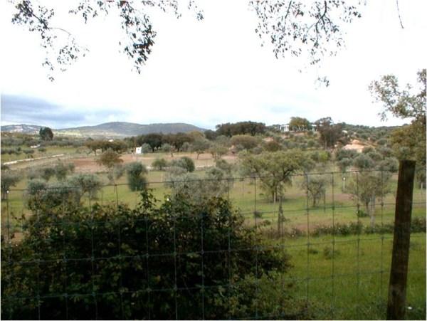 Vista_Norte