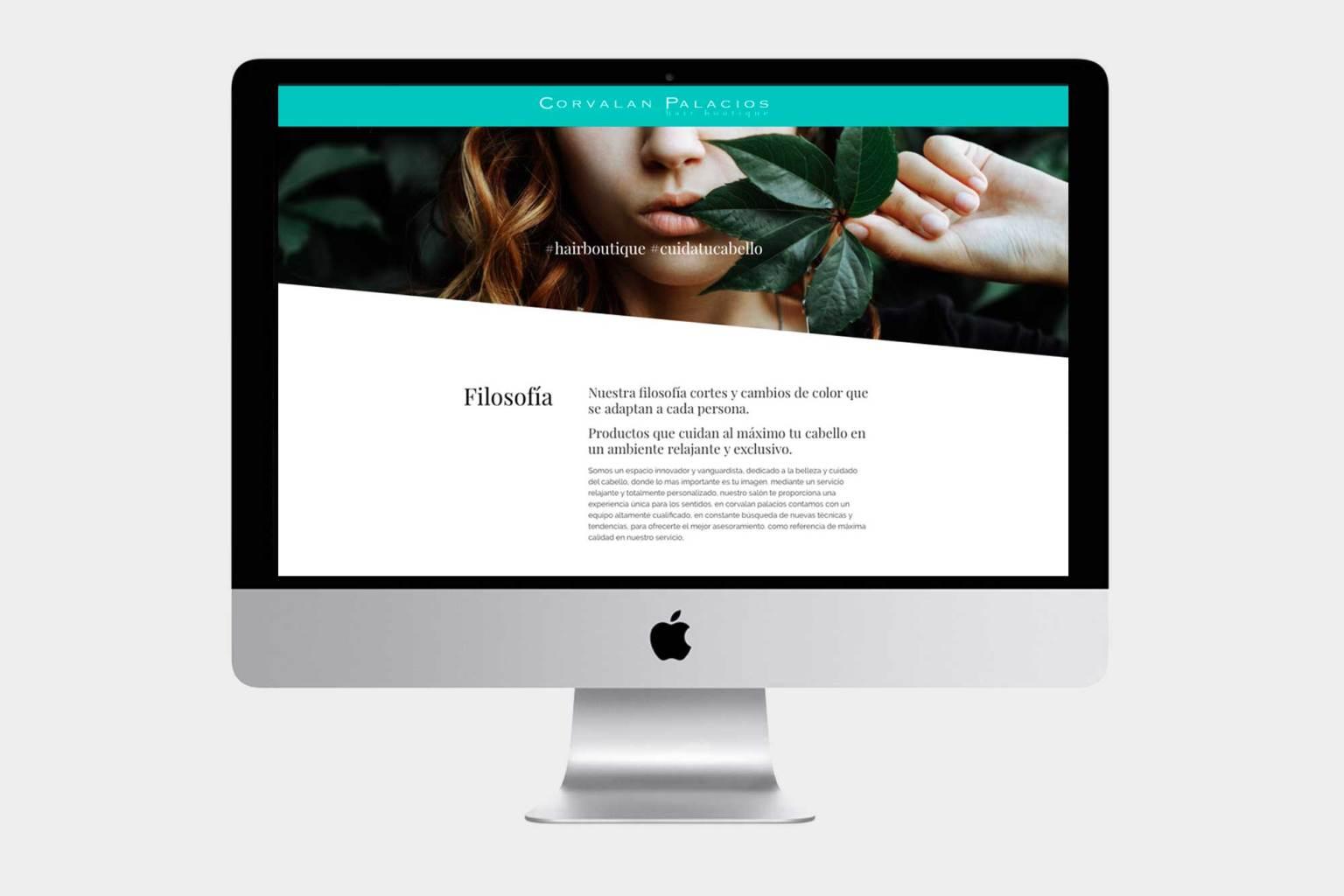 Diseño web pozuelo