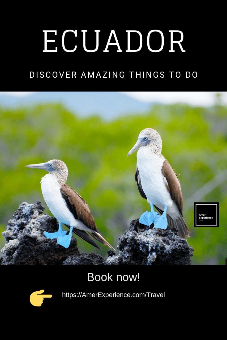 Ecuador coast and Galapagos, Ecuador coast and Galapagos Islands, AMER EXPERIENCE