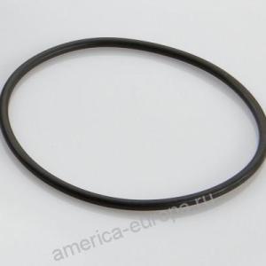 Кольцо ступицы уплотнительное SAF