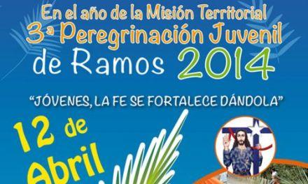 PEREGRINACIÓN DE RAMOS