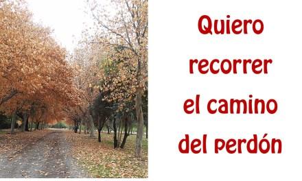 DOMINGO 24 DURANTE EL AÑO
