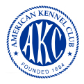 American Kennel club l'organisme du chien au USA