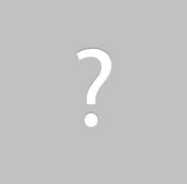 attic inspection service chewed wires animals