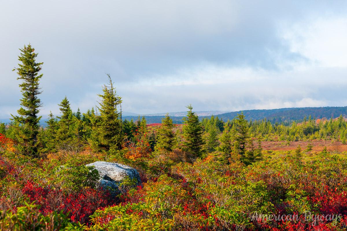 Bear Rocks Trail (No. 522)