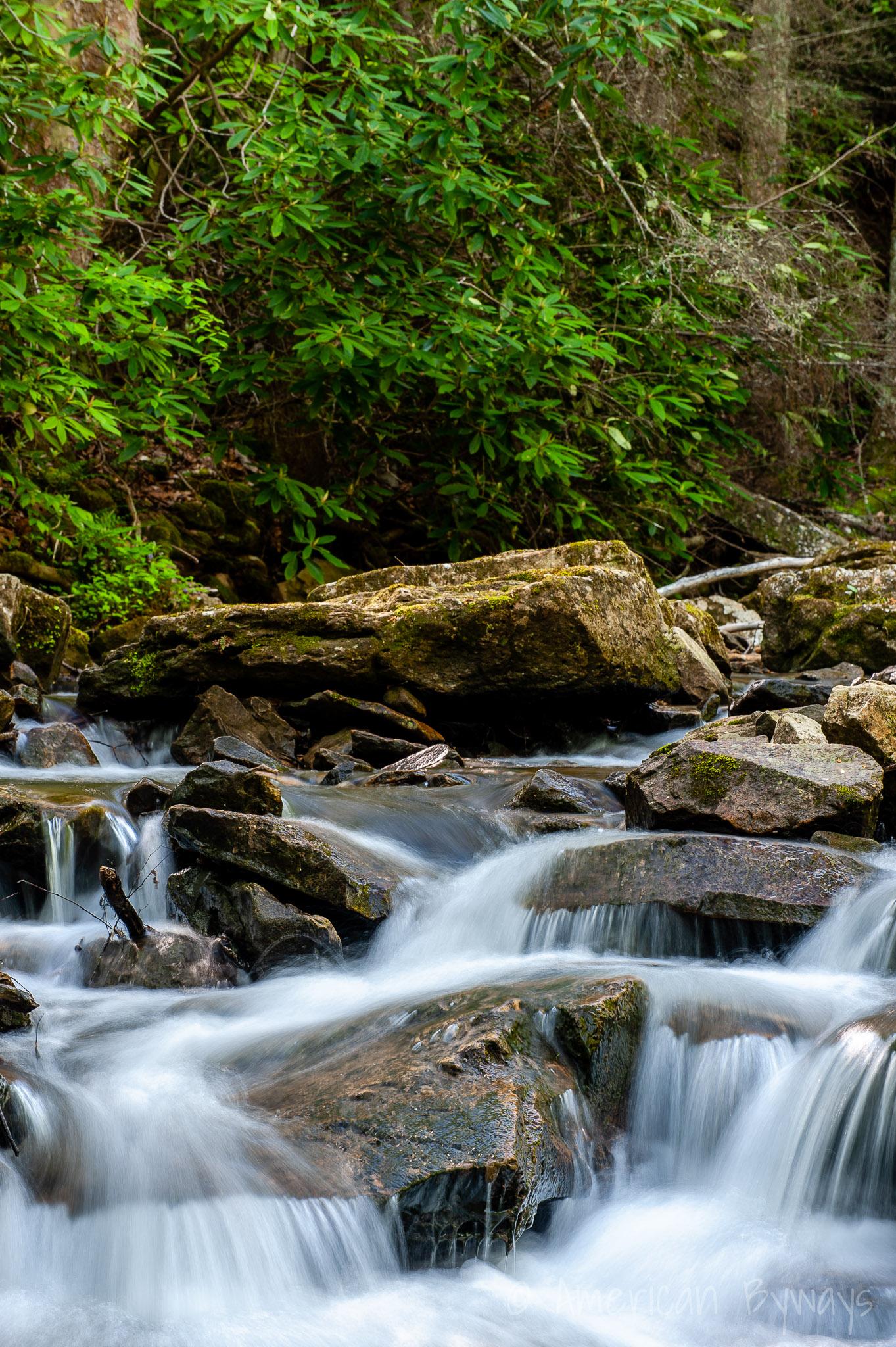 Mill Creek Cascades Hawk's Nest
