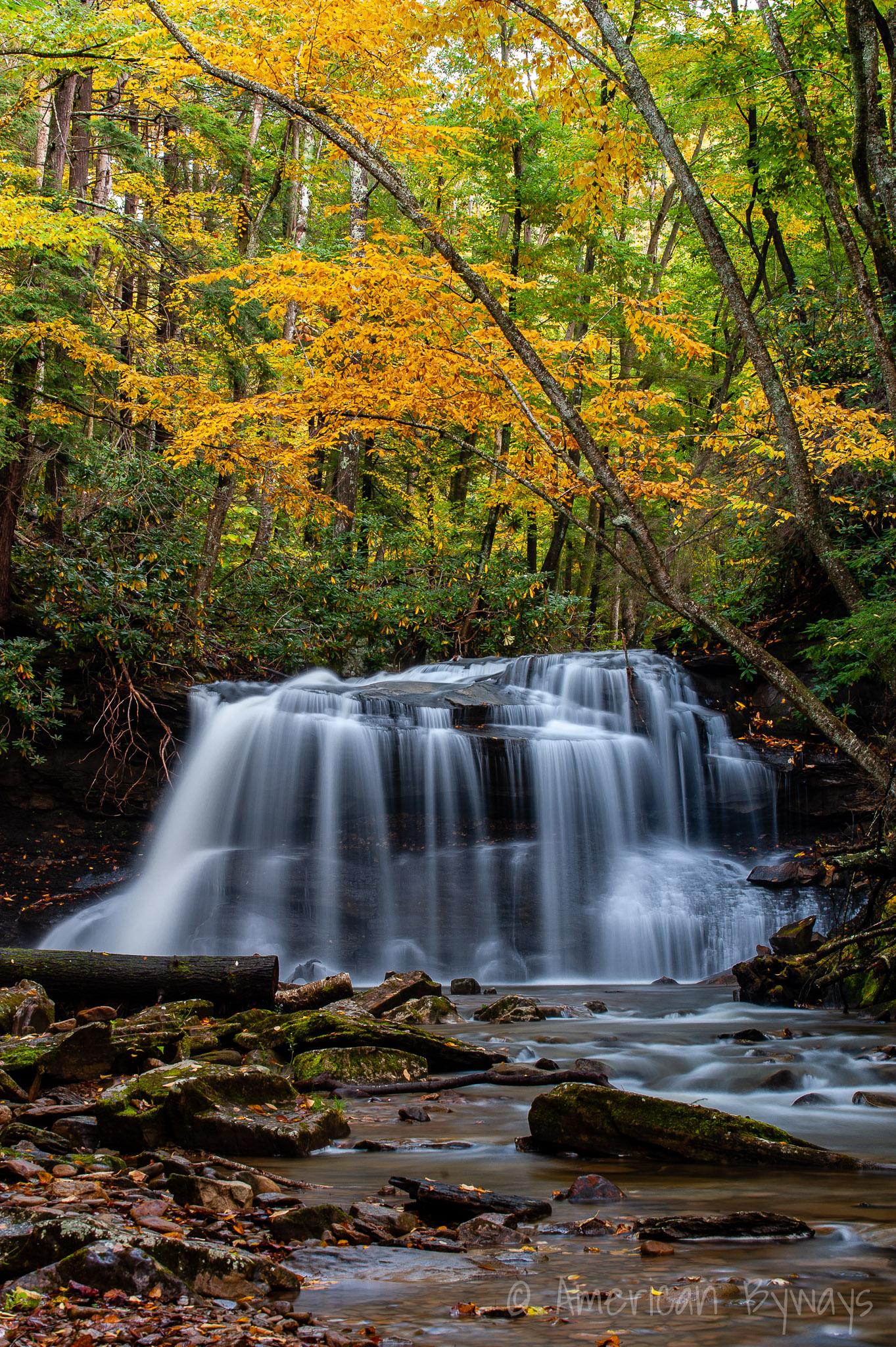 Fall Run Falls / Upper Falls at Holly River State Park