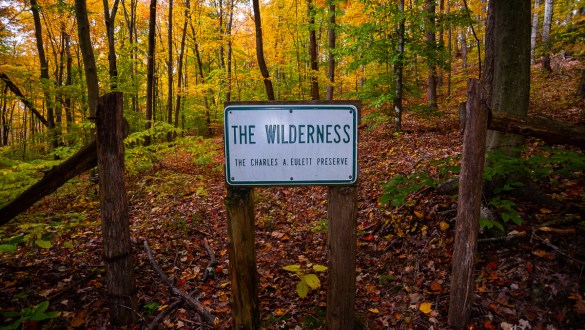 Entrance to Charles A. Eulett Wilderness