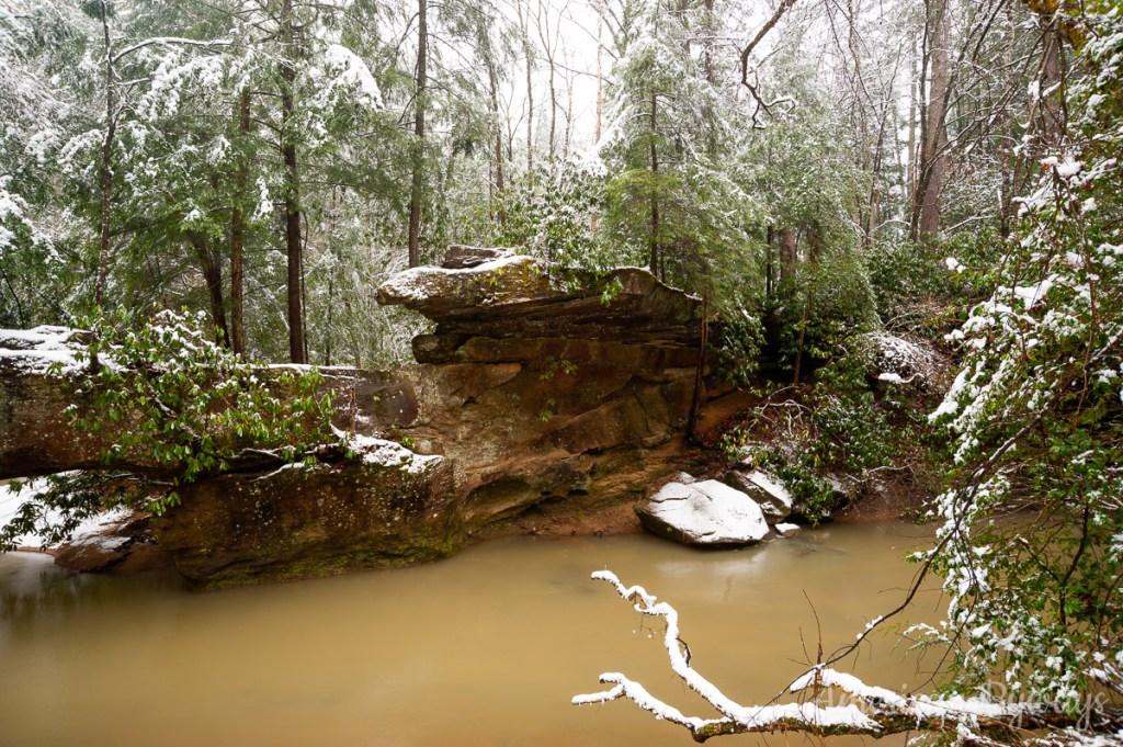 Swift Camp Creek
