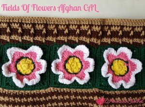FIELDS OF FLOWERS AFGHAN CAL ~ PART FOUR