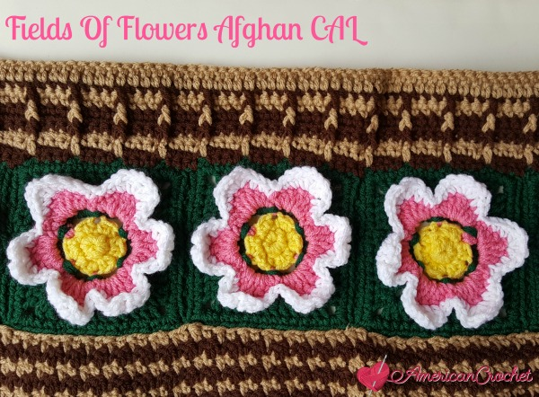Field Of Flowers Afghan