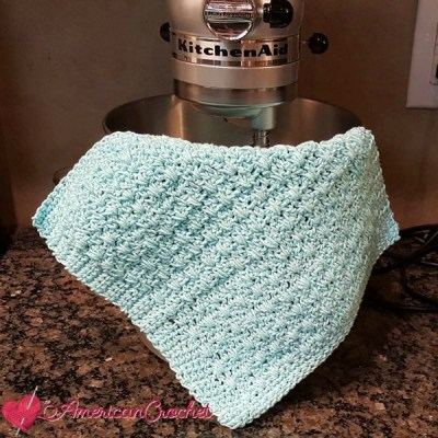 Honey Bee Dishcloth