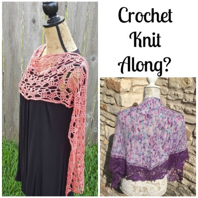 Who would like a crochet/knit along?