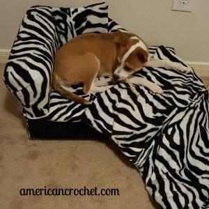 Doggie Wednesday's | American Crochet @americancrochet.com