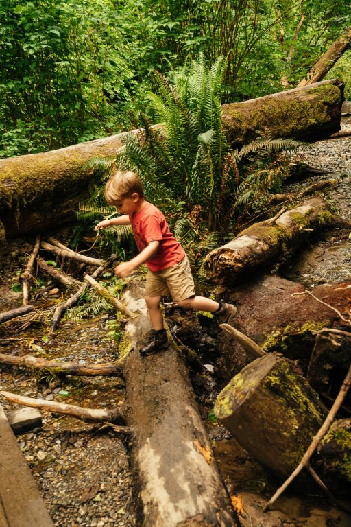 Child jumping off logs.