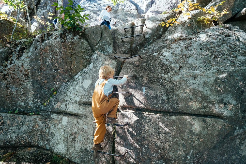 kid in carhartt overalls climbing ladder trail in acadia national park