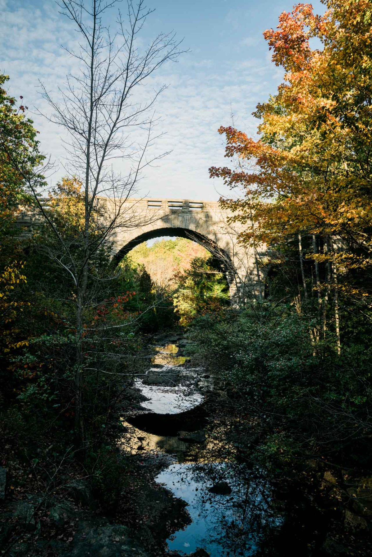 a view of a bridge on the carriage path in acadia national park