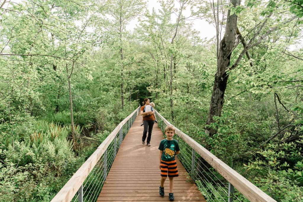 family with kids hiking at cowles bog in indiana dunes national park