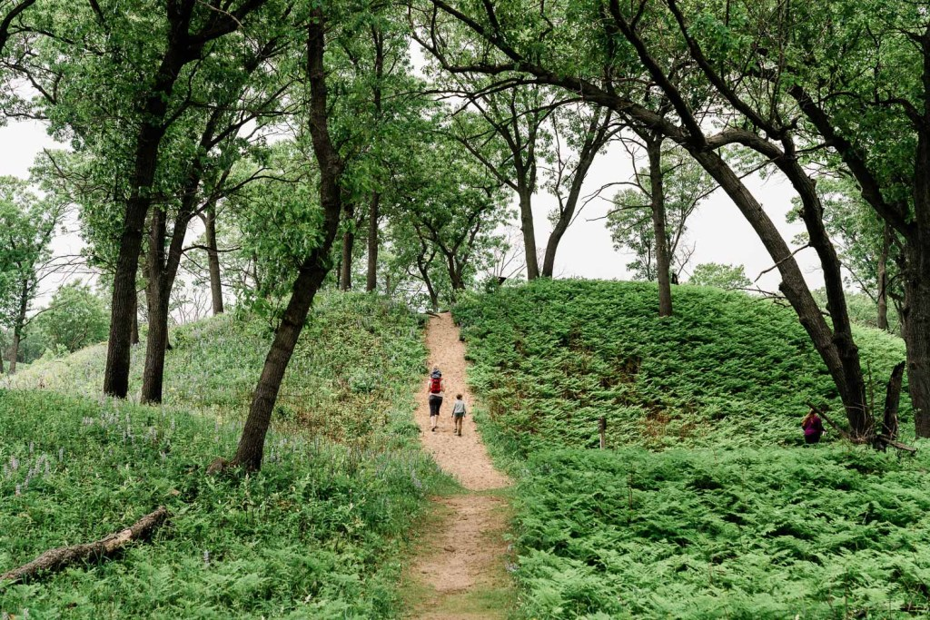 family with kids hiking at miller woods in indiana dunes national park