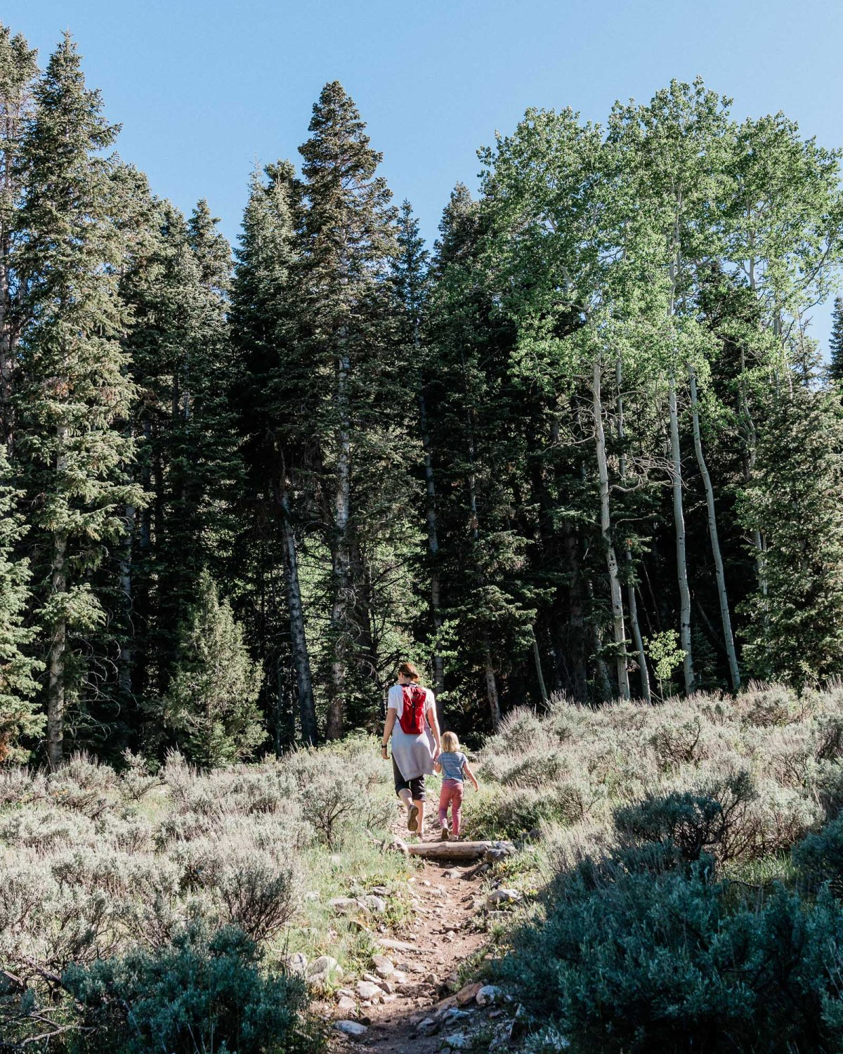 hiking with kids in great basin national park