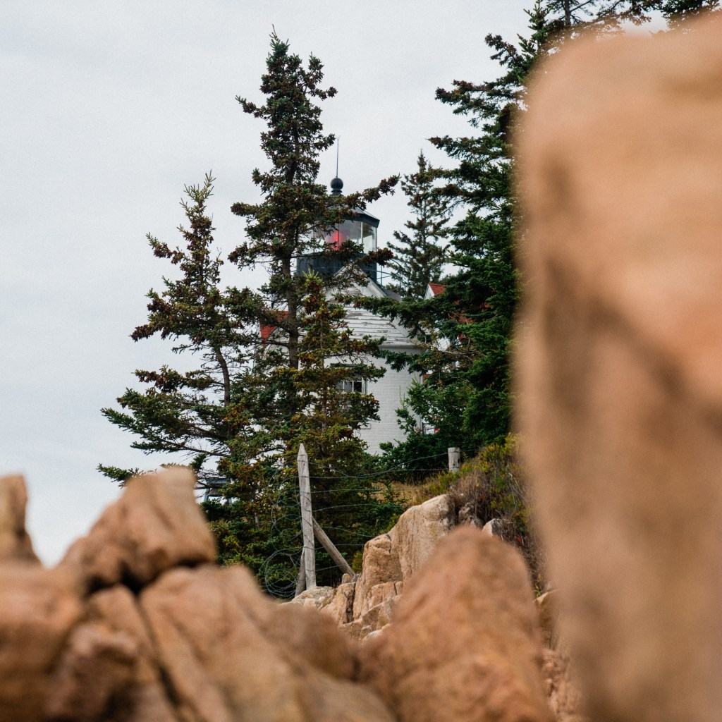view of Bass Harbor lighthouse through pine trees and granite