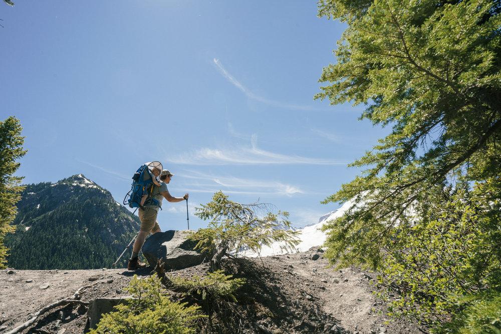 Mt  Rainier National Park - American Field Trip