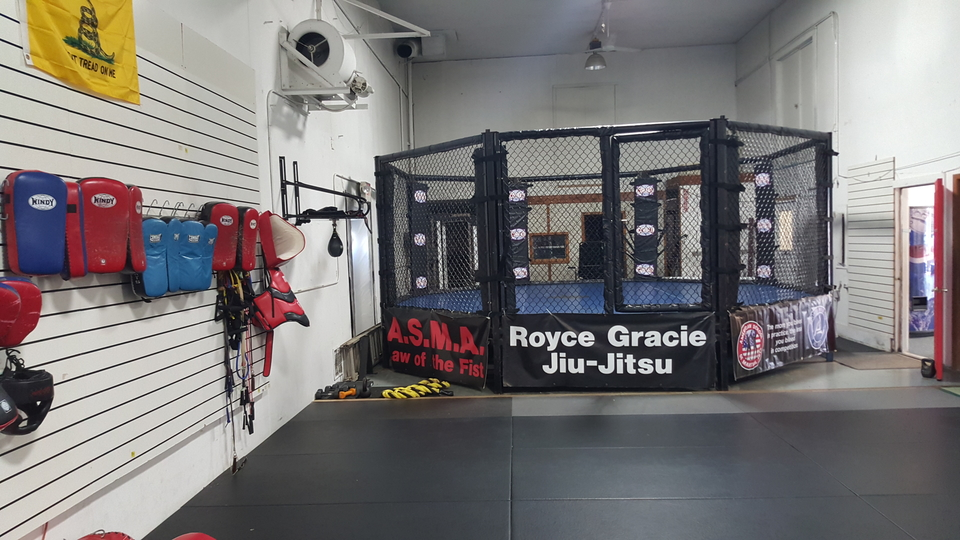 1 School in Minneapolis for Mixed Martial Arts, Brazilian
