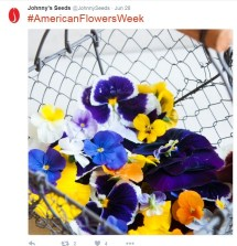 Johnny's Seeds took to social media to promote #americanflowersweek