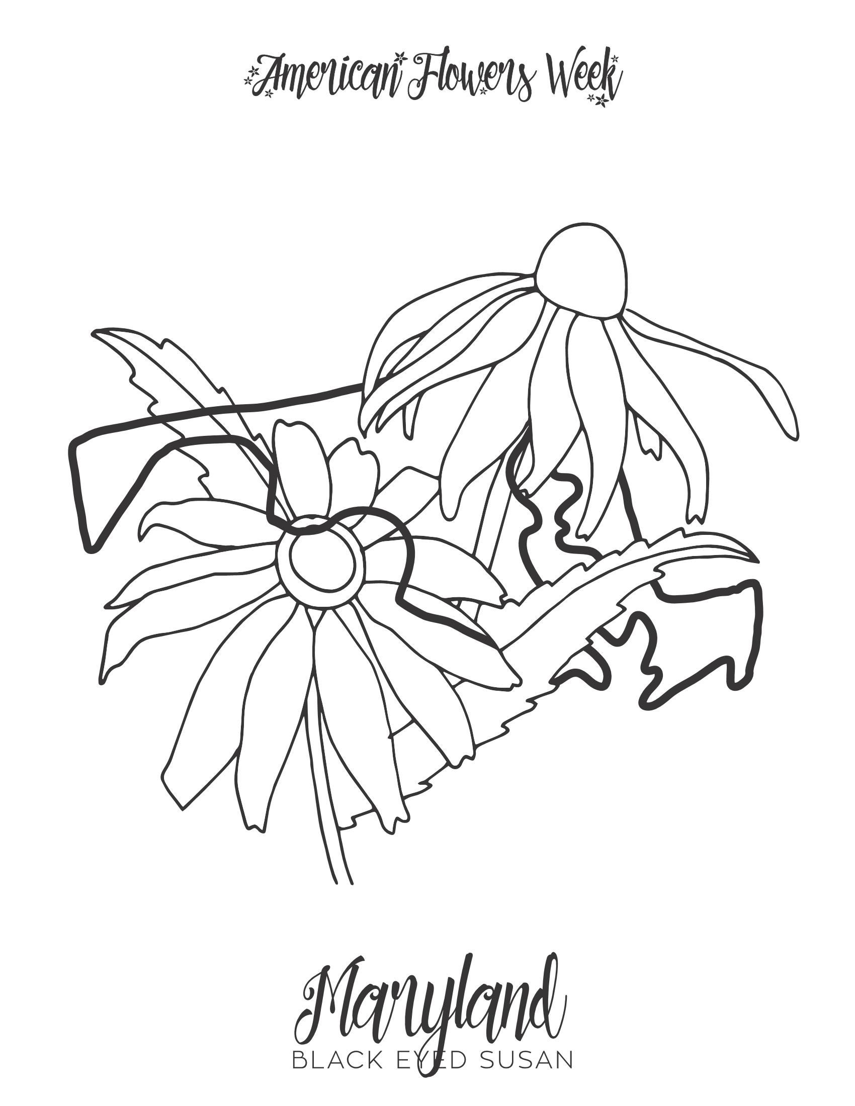 50 State Flowers — Free Coloring Pages - american flowers week