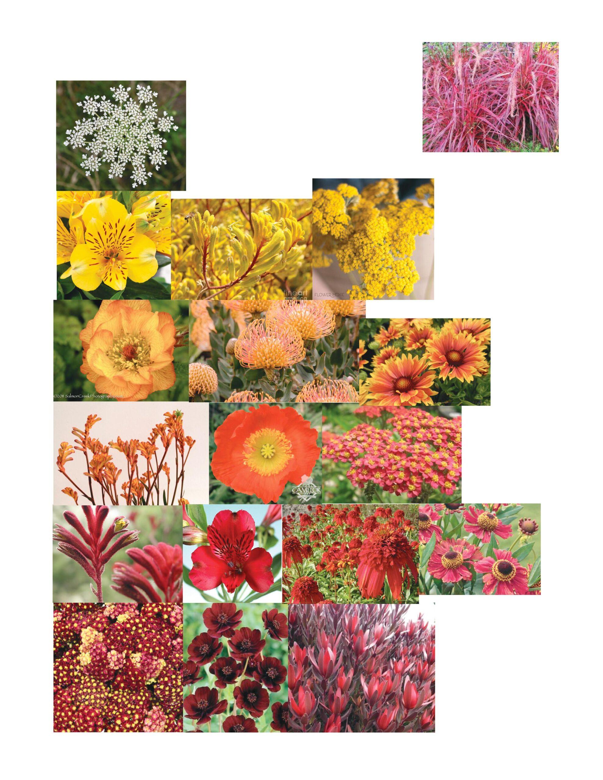 floral palette