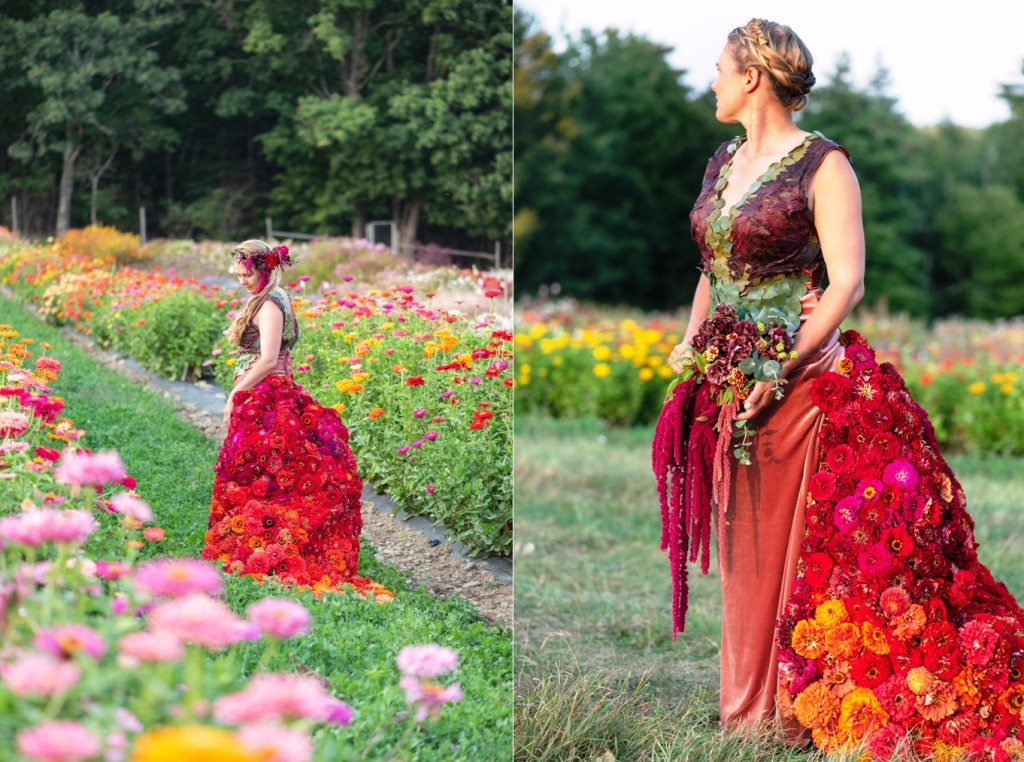 Zinnia ball gown by Johnny's Selected Seeds