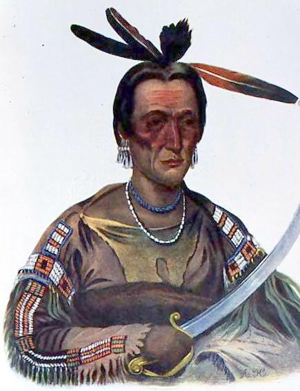 To-Ka-Cou, A Yankton Sioux Chief