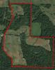 AHB-17OHCARMYE-01 American Habitat Brokerage
