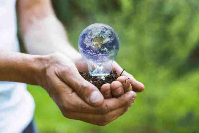 10 acciones recomendadas por la ONU para combatir la emergencia climática