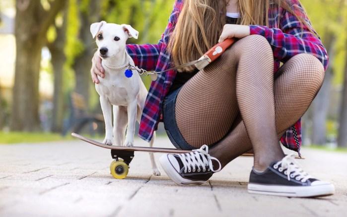 5 increíbles beneficios de pasear a tu perro que mejoran su salud