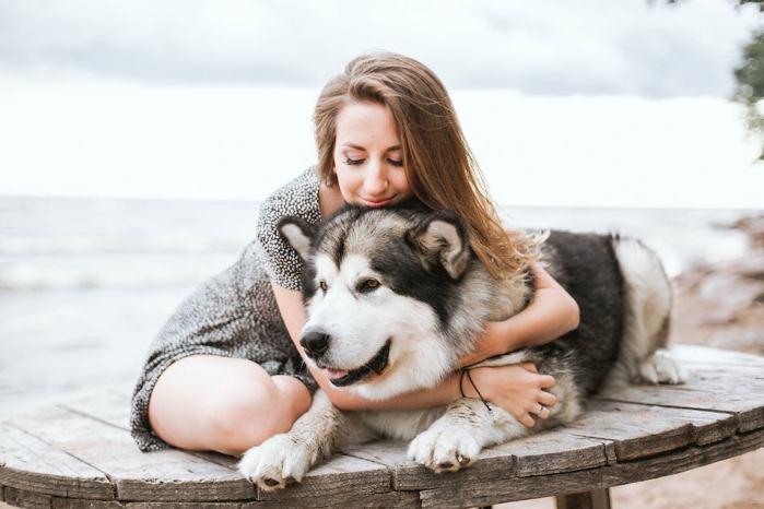 Perros y animales de companía: el valor de tener una mascota durante la pandemia